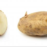 3×03: Massive Quantities of Potatoes