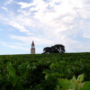 3×10: Chardonnay and Vinegar