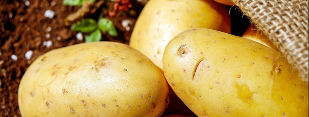 3×12: Staring at Potatoes