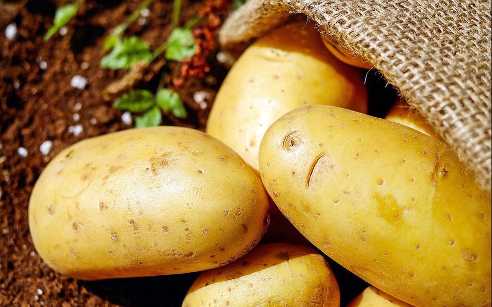 3×12: Staring at Potatoes